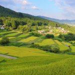 天然酵母のパン屋さん♪新潟県の山の中の[麦麦ベイク]焼き上がり時間