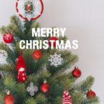 クリスマスツリーなぜモミの木?いつからツリー飾ったの?ツリー歴史